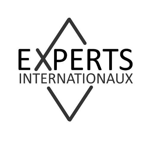 Experts Internationaux